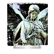 Angel With A Red Rose Shower Curtain