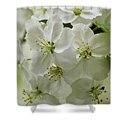 Angelic Blossom Shower Curtain