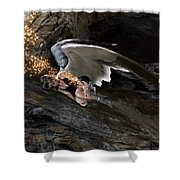 Angels- He Will Bring Peace To Your Heart Shower Curtain