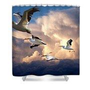 Angels In Flight Shower Curtain