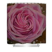 Angel's Pink Rose Shower Curtain