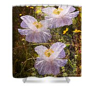 Angels' Wings Shower Curtain