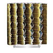 Angkor Wat Colonnettes 01 Shower Curtain
