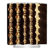 Angkor Wat Colonnettes 03 Shower Curtain