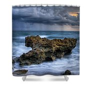Angry Shower Curtain by Debra and Dave Vanderlaan