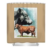 Angus Cattle Shower Curtain