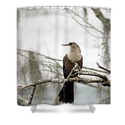 Anhinga On A Misty Morning Shower Curtain
