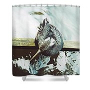 Anhinga Or Snakebird Shower Curtain