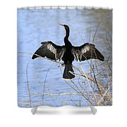 Anhinga Over Blue Water Shower Curtain
