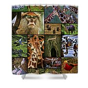 Animal Collage Shower Curtain