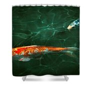 Animal - Fish - Koi - Another Fish Story Shower Curtain by Mike Savad