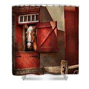 Animal - Horse - Calvins House  Shower Curtain