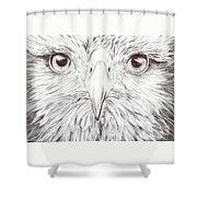 Animal Kingdom Series - Bird Of Prey Shower Curtain