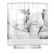 Animal Kingdom Series - Gentle Giant Shower Curtain