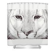 Animal Kingdom Series - Mountain Lion Shower Curtain