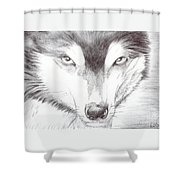Animal Kingdom Series - Wild Friend Shower Curtain