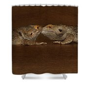 Animal Life Shower Curtain