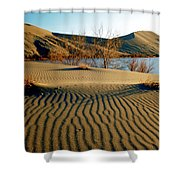 Animal Tracks In The Sand Shower Curtain