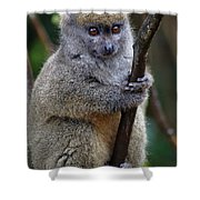 Animals 21 Shower Curtain