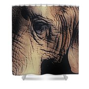 Animals Wrinkle Too Shower Curtain