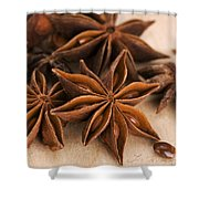 Anis Stars  Shower Curtain