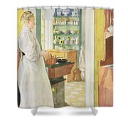 Anna Arnbom , Pub. In Lasst Licht Hinin Shower Curtain