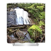 Anna Ruby Falls - Georgia - 4 Shower Curtain
