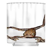 Annam Flying Frog Shower Curtain by Roger Hall