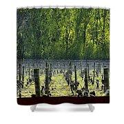 Anne Amie Vineyard 23126 Shower Curtain