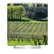 Anne Amie Vineyard Lines 23093 Shower Curtain