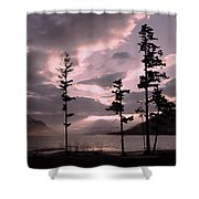 Anniversary Afternoon Shower Curtain
