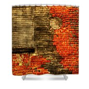 Another Brick In The Wall Shower Curtain by Thomas Young