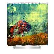 Another Chance Shower Curtain