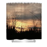 Another Dusk Shower Curtain