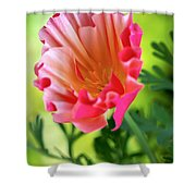 Another Glimpse Shower Curtain by Heidi Smith