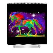 Another Rainbow Stallion Shower Curtain