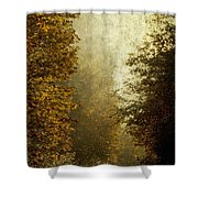 Another Road Travelled Shower Curtain