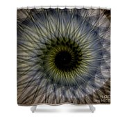 Another Spiral  Shower Curtain