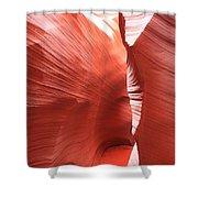 Antelope Passage Shower Curtain