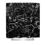 Anthracite Flickering Of The Black Atlas Shower Curtain
