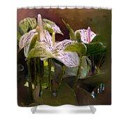 Anthutium Shower Curtain