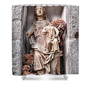 Antique Blessed Virgin Statue Shower Curtain