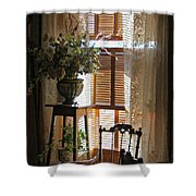 Antique Lace Shower Curtain