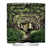 Antique Pergola Arbor Shower Curtain