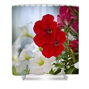Antique Petunia Flowers Shower Curtain