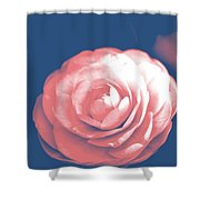 Antique Pink Camellia Flower Shower Curtain