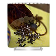 Antique Pouch Of Ball And Jacks Game Art Prints Shower Curtain
