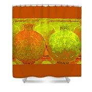 Antique Vases Shower Curtain