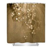 Antique Veil Shower Curtain