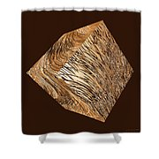 Antique White Gold Abstract Cube Shower Curtain